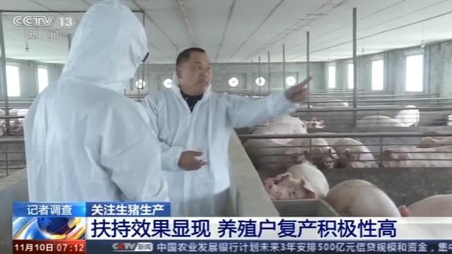 生猪生产扶持政策效果追踪:养殖户信心提升存栏量持续增加