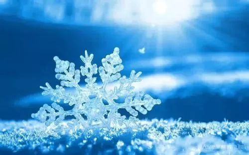 教你初冬保健小常识,这个冬天健康又养生!