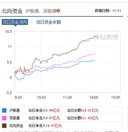 郑州鸵鸟园双十一市场促销,3000减100,外资买买买!