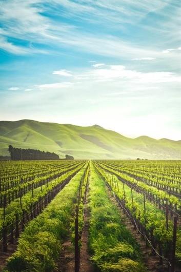 德密特加速智慧农业发展,催生链上经济新模式