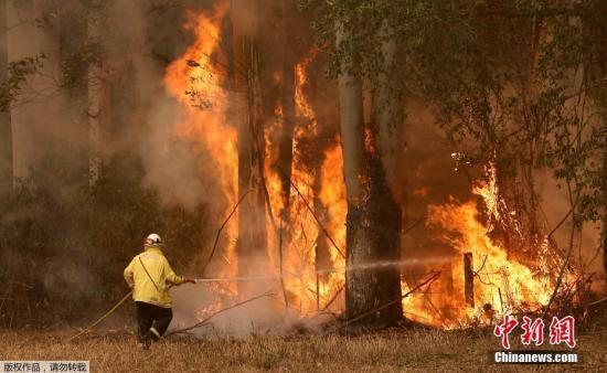 越烧越烈!澳大利亚悉尼首遇10年来最大野火威胁