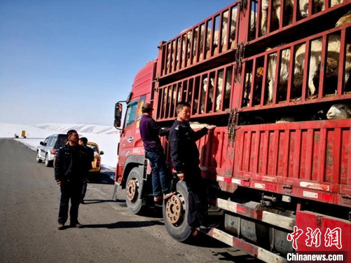 新疆天山深处5名民警和牧民的生活_转场