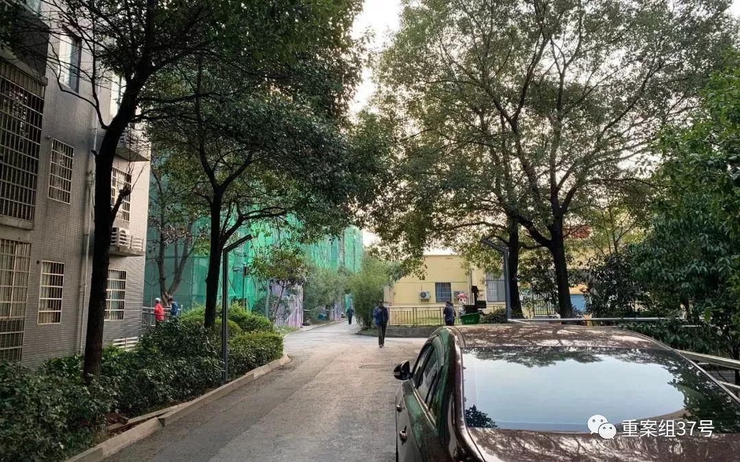"""长沙9岁男童遇害案嫌犯:""""无人知晓""""注册恩佐精神病人"""