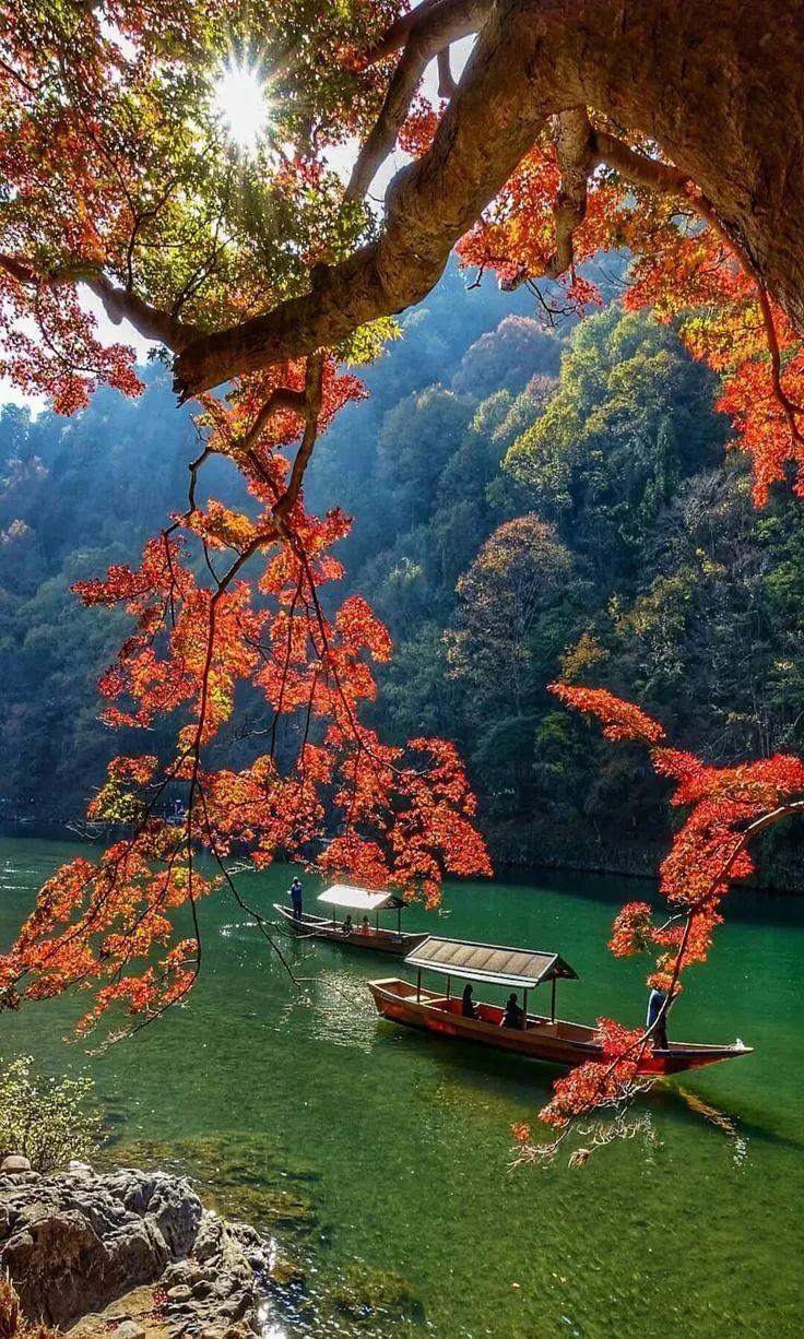 秋天田野里的景色