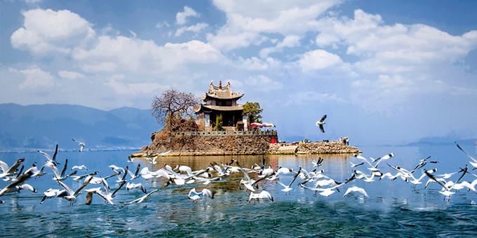 这个春节去云南过暖冬,有哪些不可错过的体验
