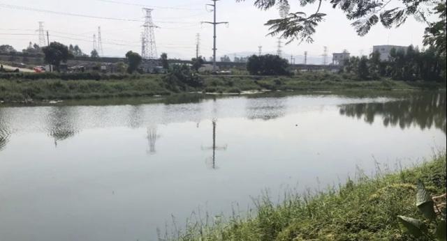 最后通牒,东莞桥头的企业11月20日前要完成雨污分流改造!_工作