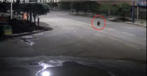 半夜,空无一人的街上,突然出现1岁幼童光脚乱跑