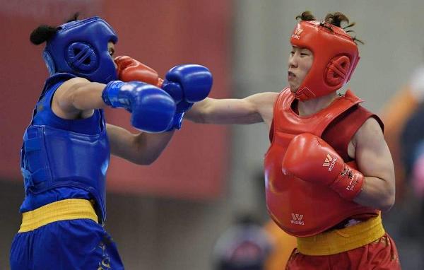 世界武术锦标赛合肥李志勤夺冠