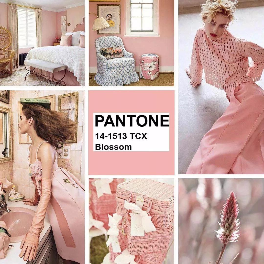 使用PANTONE四种年度流行色 瞬间提高物品颜值