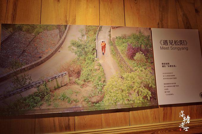 """浙江这个村落被誉为""""云山平田"""",成为网红打卡地,仿佛到了云中_地方"""