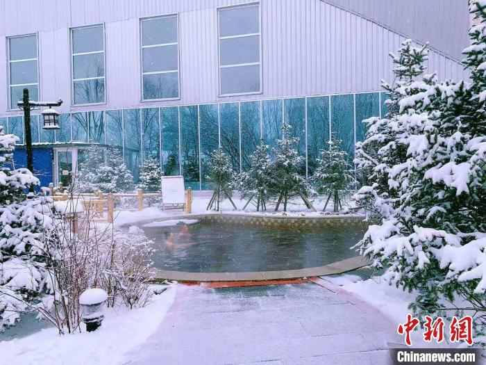 http://www.hljold.org.cn/wenhuayichan/322583.html