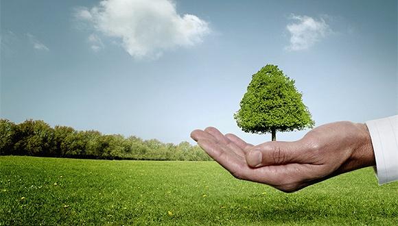生态环境部征集中国生态环境保护吉祥物,特等奖奖金1万