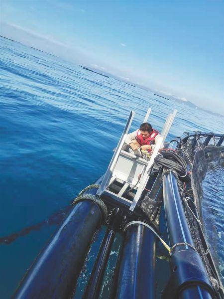 """海南首个""""5G+海洋牧场""""试行 揭秘深水养殖科技"""
