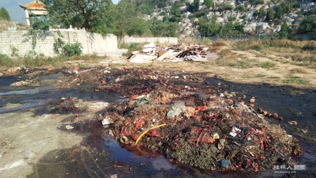 民生丨桂林一公墓周围家禽腐尸遍地,血水横流!出什么事了?