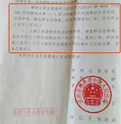 """""""江西鹦鹉案""""被告人二审改判缓刑"""