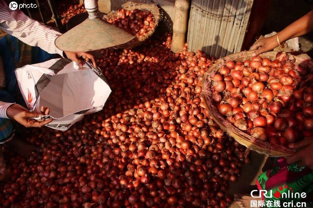 """印度禁止出口洋葱 孟加拉国""""遭殃了"""" 连总理都......"""