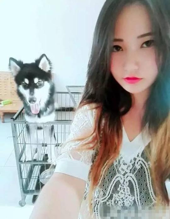 搞笑GIF:妹子再漂亮,抢镜也抢不过二哈 _段子