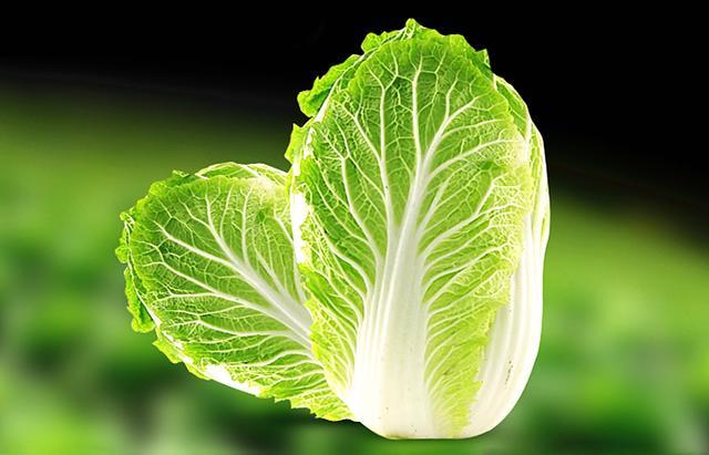 大白菜、小白菜和娃娃菜有什么区别,谁的营养好,哪个更好吃?