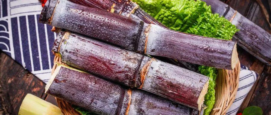 这些水果最适合在冬天食用,快来看看都有什么!
