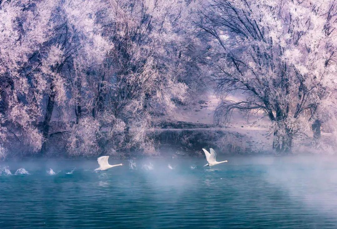 我想和你去看雪专属我们的童话世界_风景