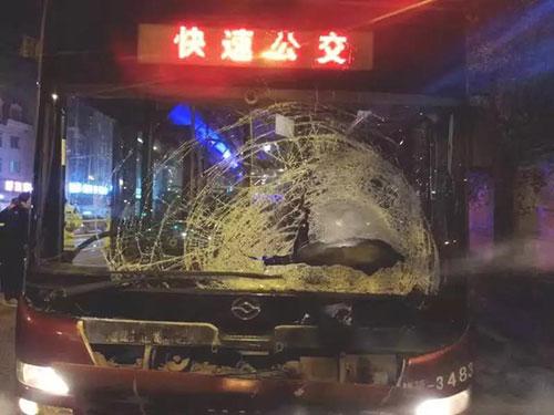 泡崖美林园附近!男孩骑车闯入公交专用道,连人带车被撞飞……