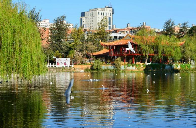 """我国最""""宜居""""的城市:四季如春消费还划算,看看是你的家乡吗"""