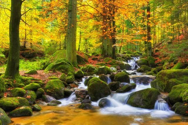 旅途中怎么拍出秋天的味道?
