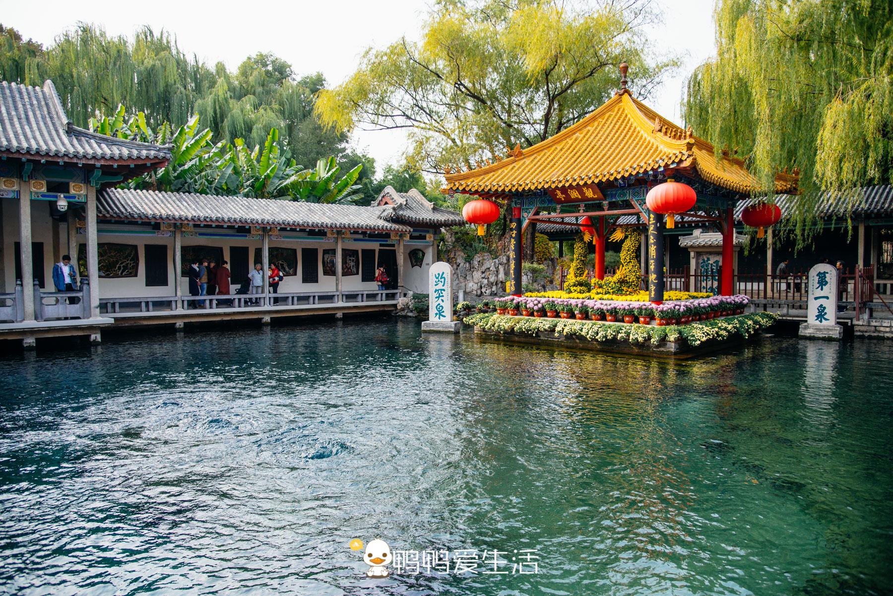 小學課本上的景點,泉城濟南的標志,常年噴涌不斷,游客:太神奇了!_泉水