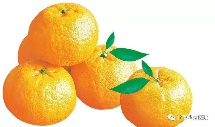 我适合吃什么水果?——6种常见水果药性功效