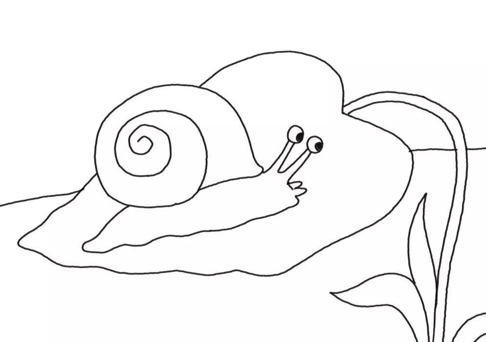 简简单单画出快乐 大象和蜗牛简笔画