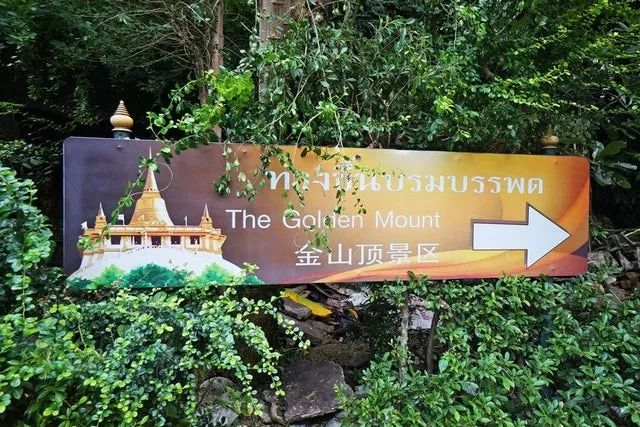 曼谷海拔最高的寺庙!跟着资深旅行家,深度游览金山寺