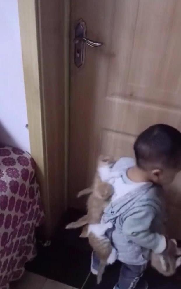 原创 女子出门拿快递,五分钟后看到这幕,网友:勤洗孩子,不然会长猫