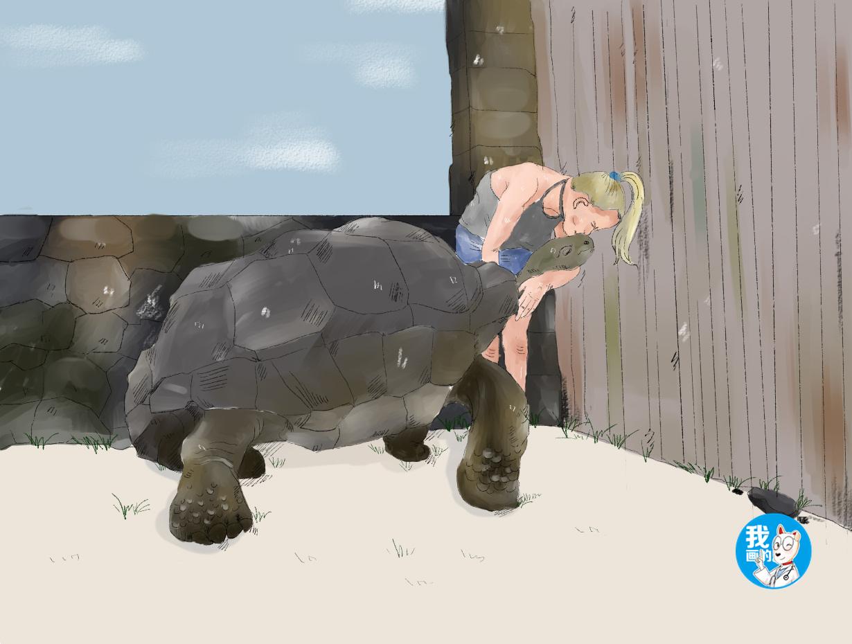 原创 女子喂乌龟吃食,刚开始一切都很正常,过了会却让人瘆得慌