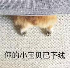 """长腿""""日版江疏影""""成老司机最爱的身体?_身材"""