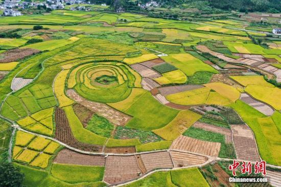 如何建设高标准农田?农业农村部:从四个方面发力