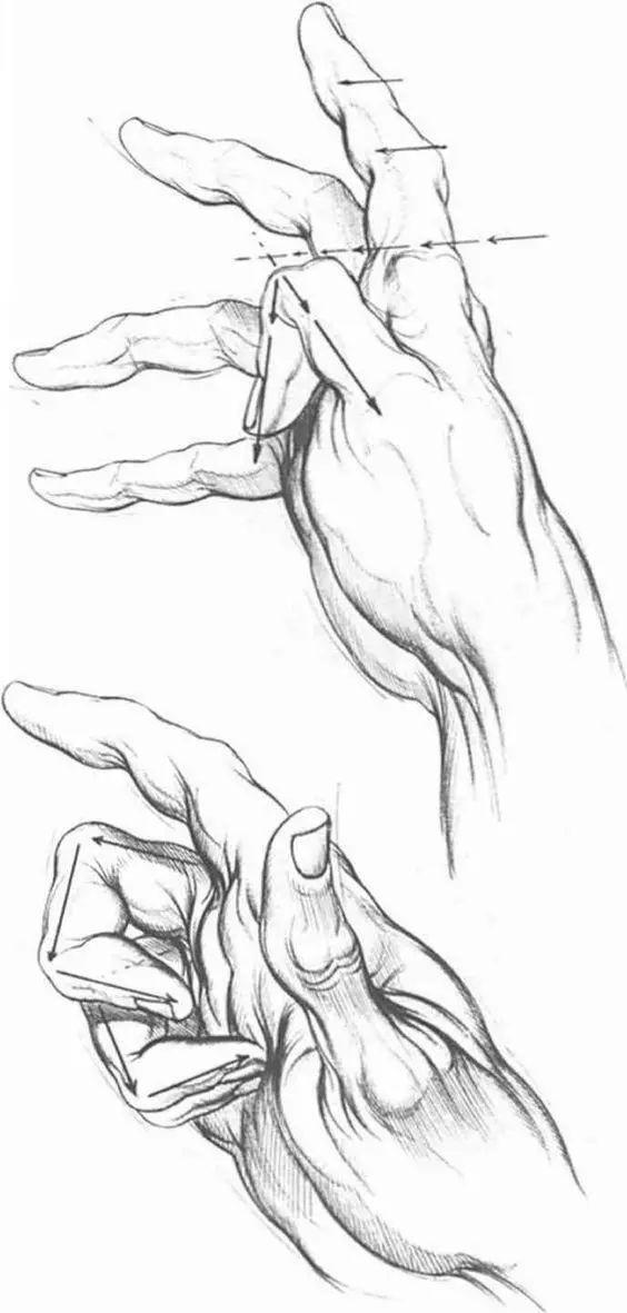 精致 传神的素描,一笔一画美到晕厥,这才是手,我这是爪