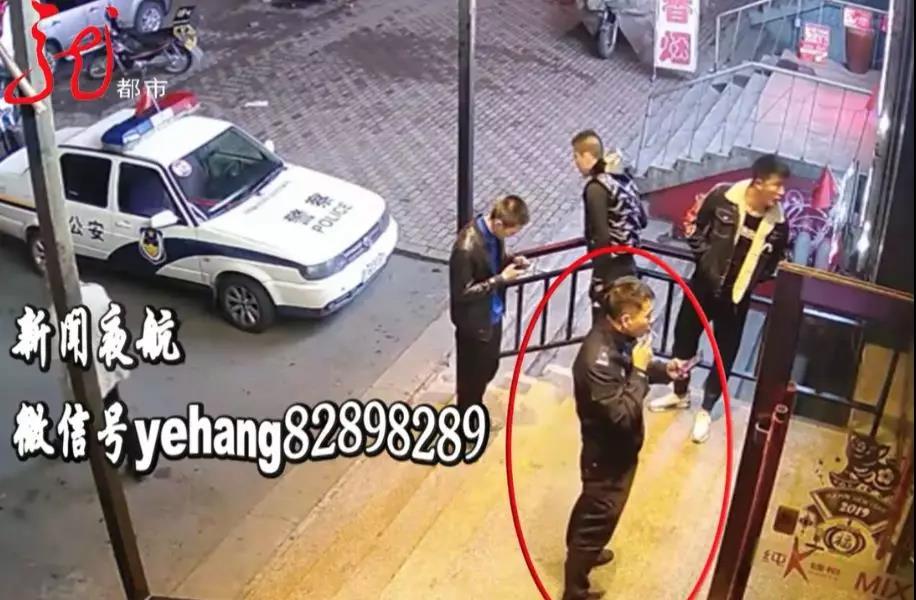 同一只鹩哥被连偷两次,居然还跟着小偷学会了骂人…