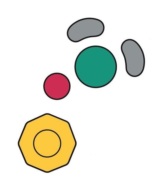 任天堂注册GameCube手柄模拟与按钮商标