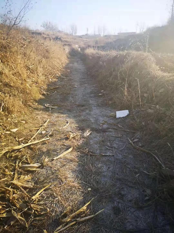 河北曲阳9岁女童上学途中被恶犬咬死续,官方:养犬者已赔偿