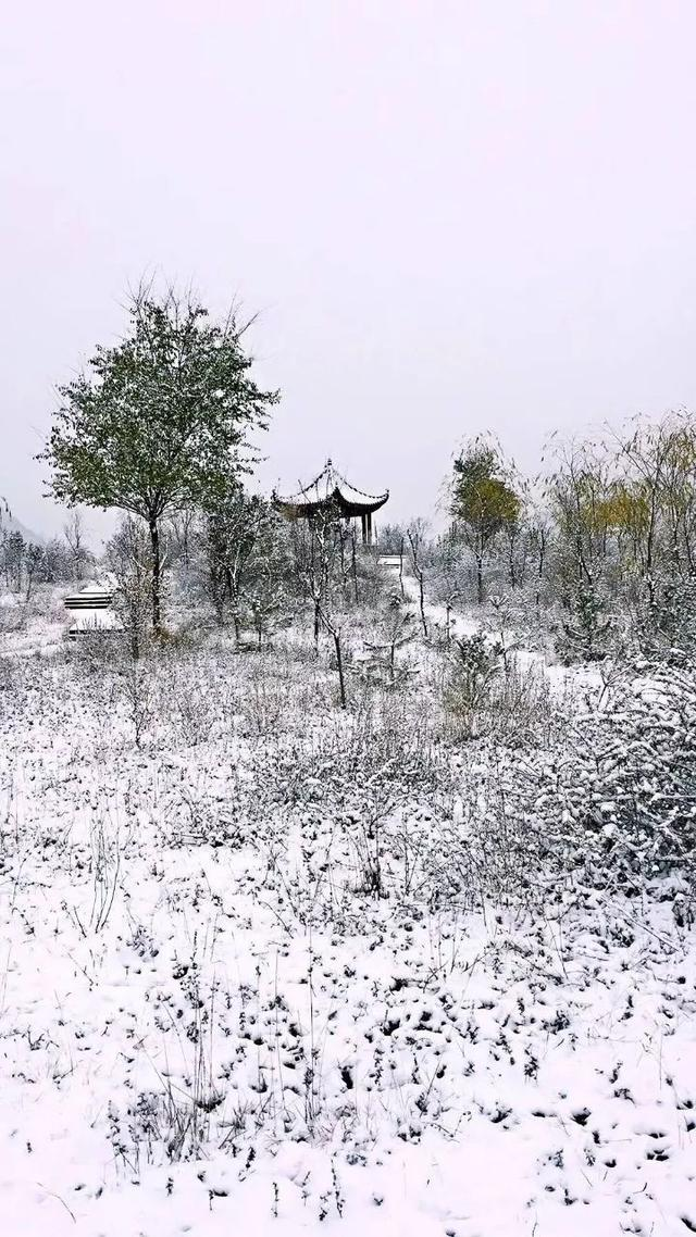 冬季九寨沟3日旅游攻略|冬天的九寨沟怎么样|九寨沟冬天开放吗
