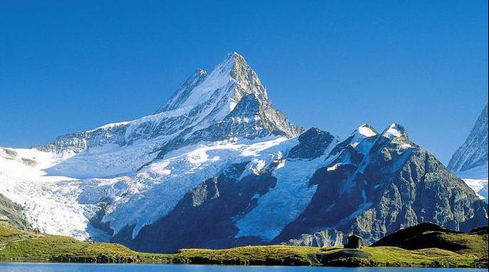 冰川逝去!阿爾卑斯山冰川或將在本世紀消失