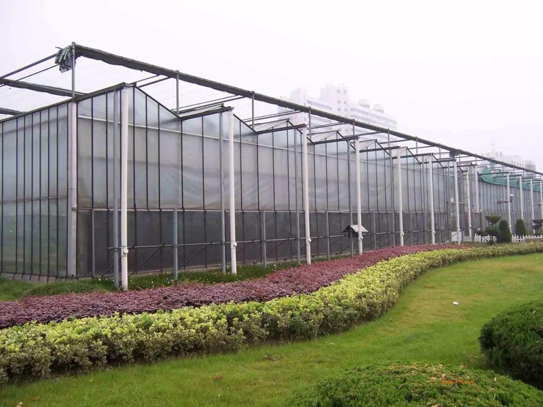 按排6000万,安徽首次将连栋温室大棚纳入农机购置补贴