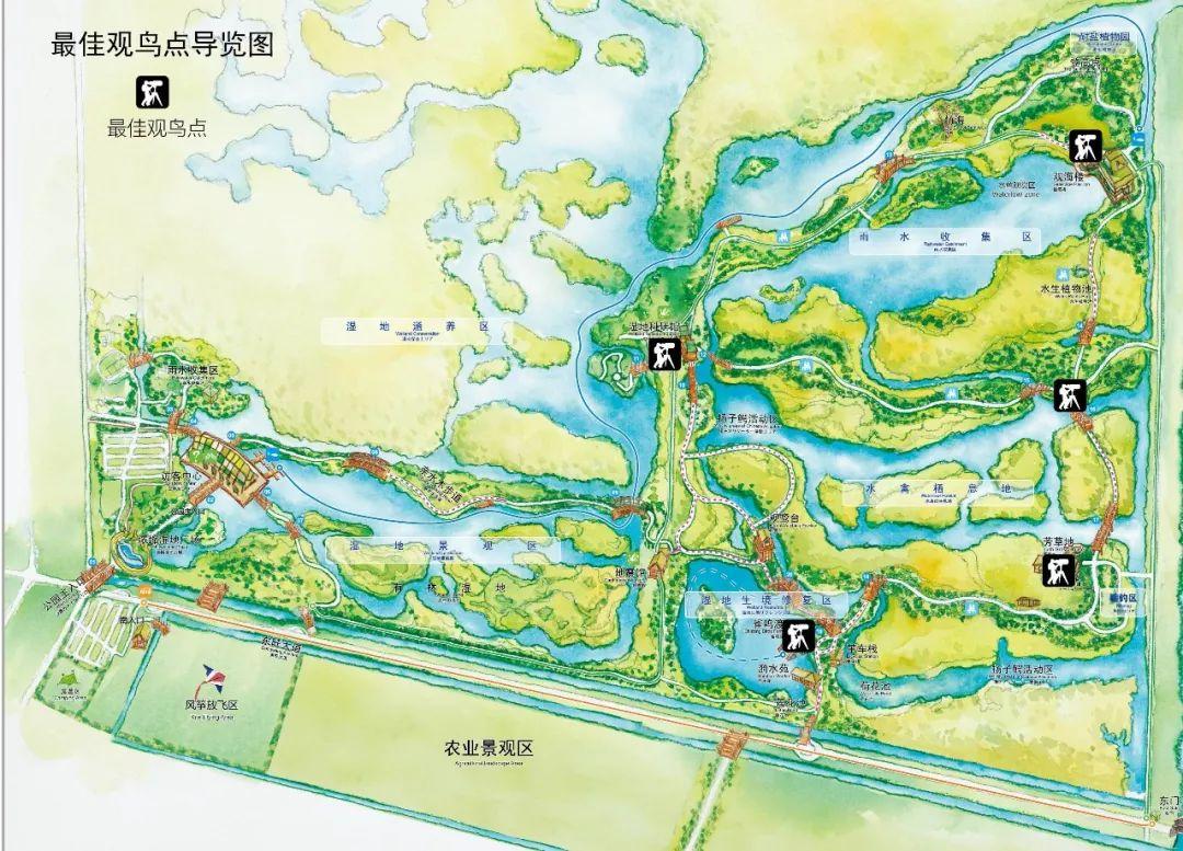 湿地公园平面图手绘
