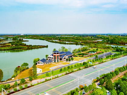 武汉东原·阅境:临空港再添人居自然生态名片——杜公湖湿地公园