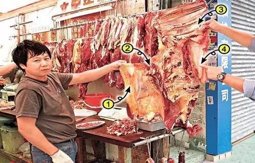 牛腩,到底是牛身上哪个部份?