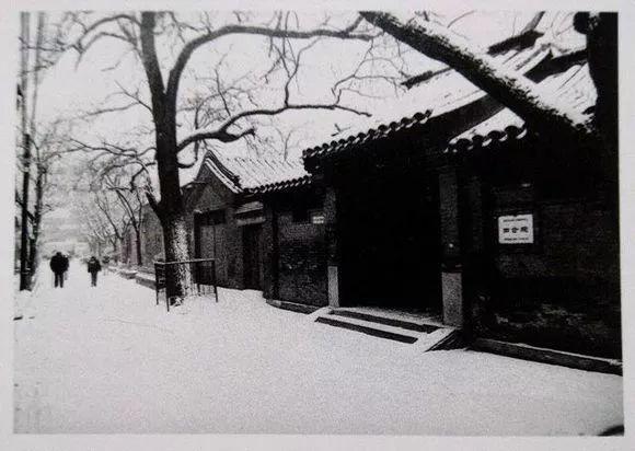雪后的老北京,到底有多美