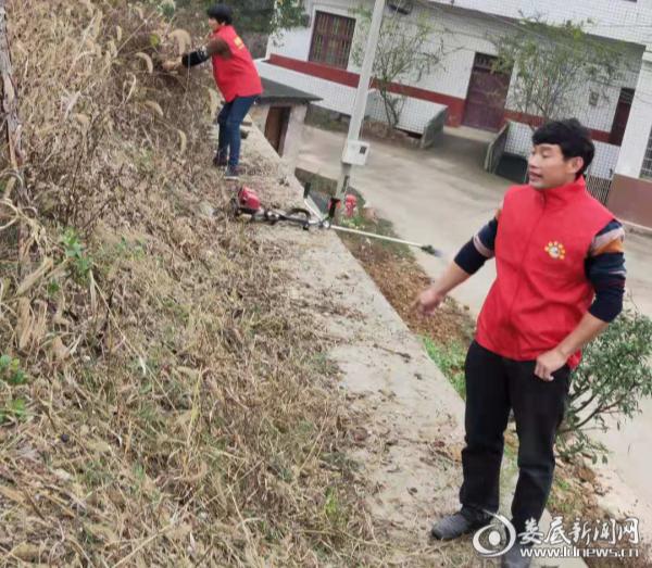 杨市镇开展人居环境整治大行动 绘就美丽乡村新画卷