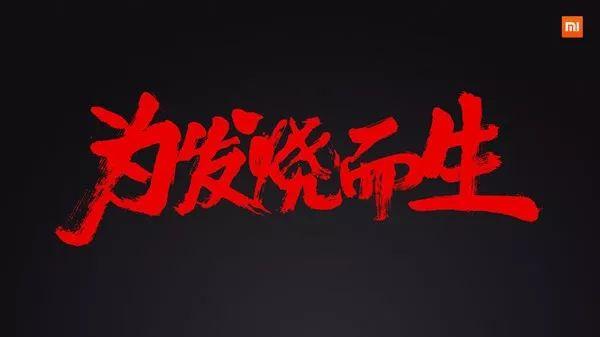 """原创             小米""""退烧"""",雷军面临""""中年危机""""!"""