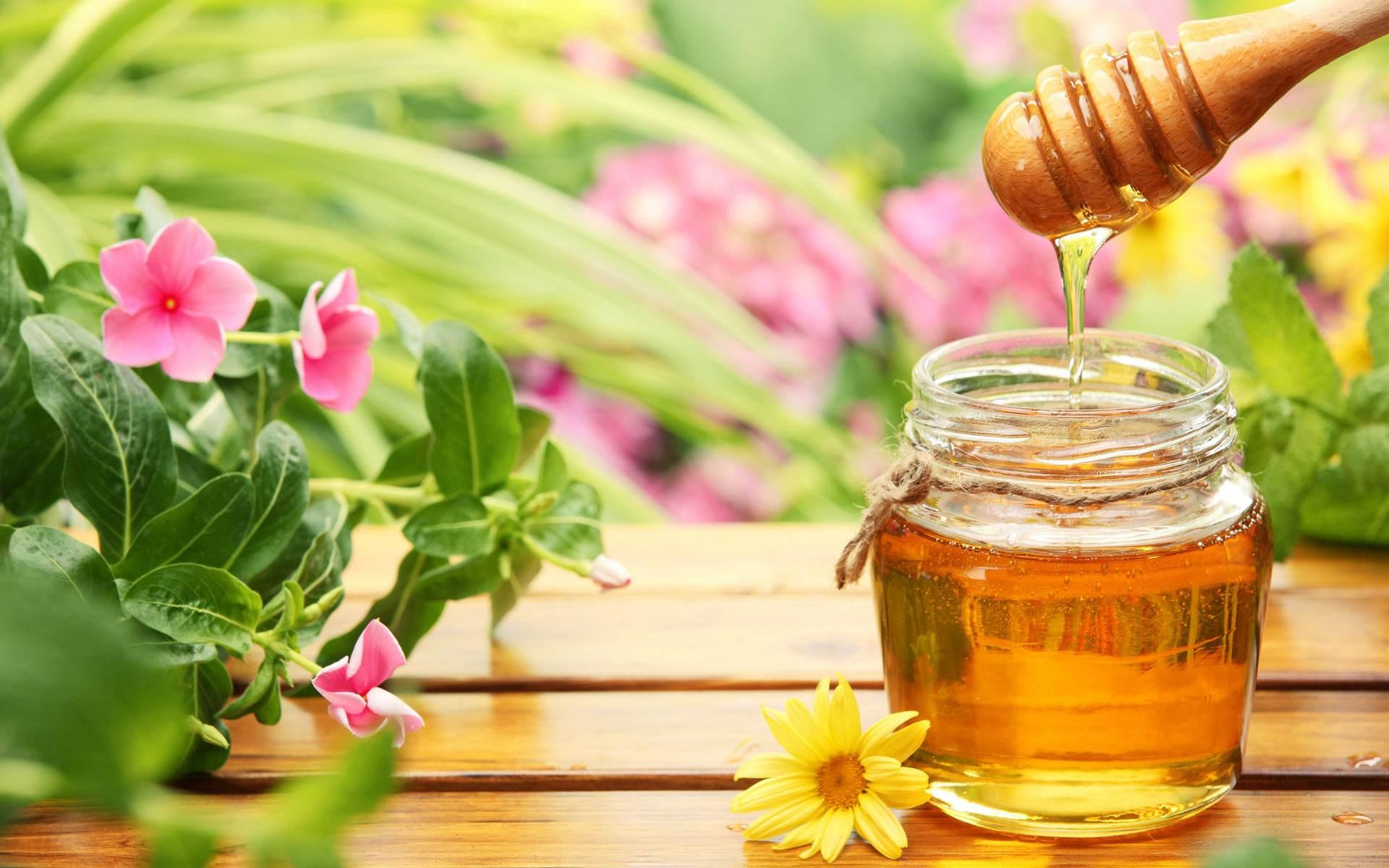 营养师:每天吃点蜂蜜花粉,这7个好处看得见