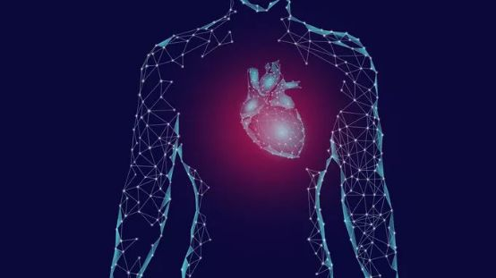 10项举措提高院外心脏骤停抢救成功率